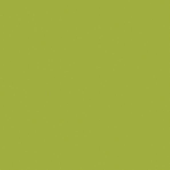 Сменный чехол для подушки 170 Jersey зеленый